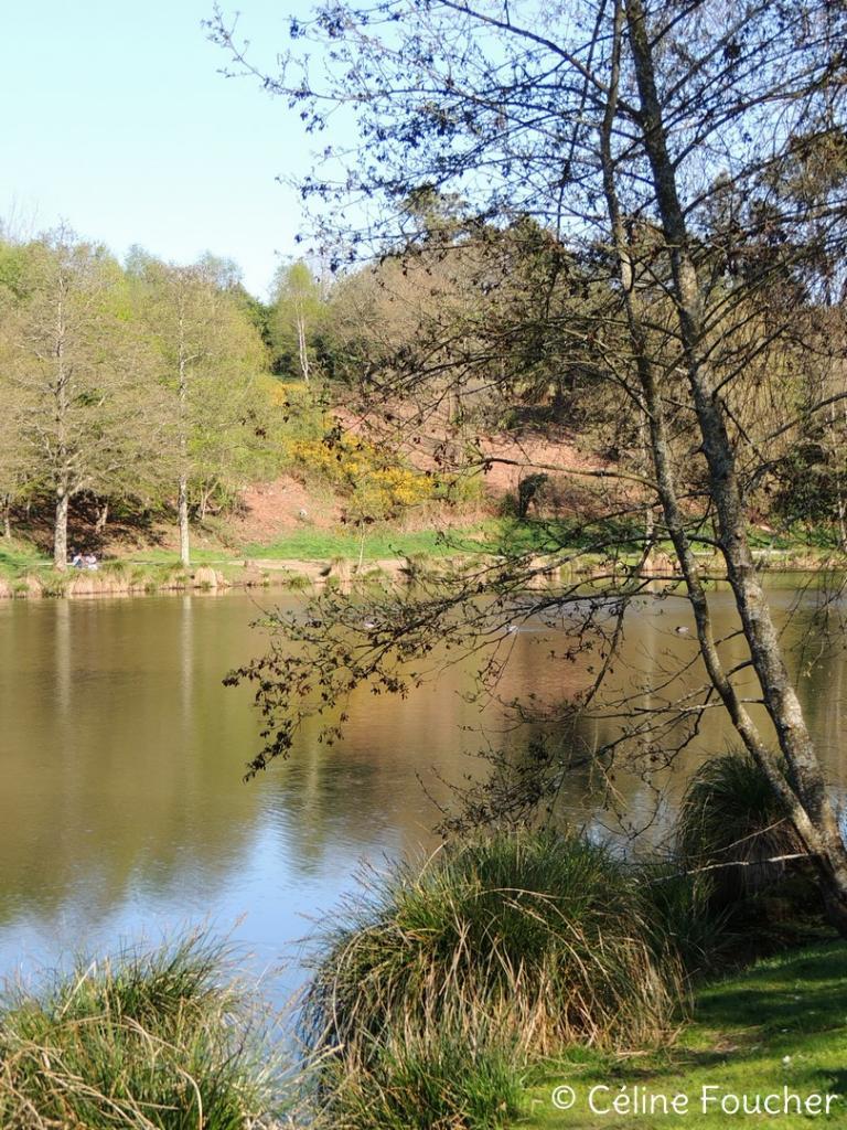 2017-04-09_Lac de Questembert